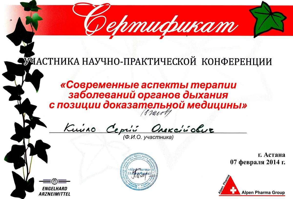 Документ №:33 Сертификат пластического хирурга Кийло Сергея Алексеевича